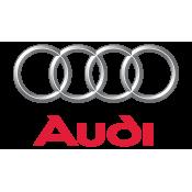 Audi 50 (1)