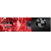 BMW Pasklaar Audio system (7)