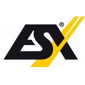 ESX Audio  (71)
