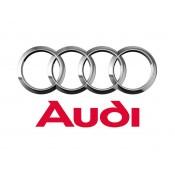 Audi uniball (3)